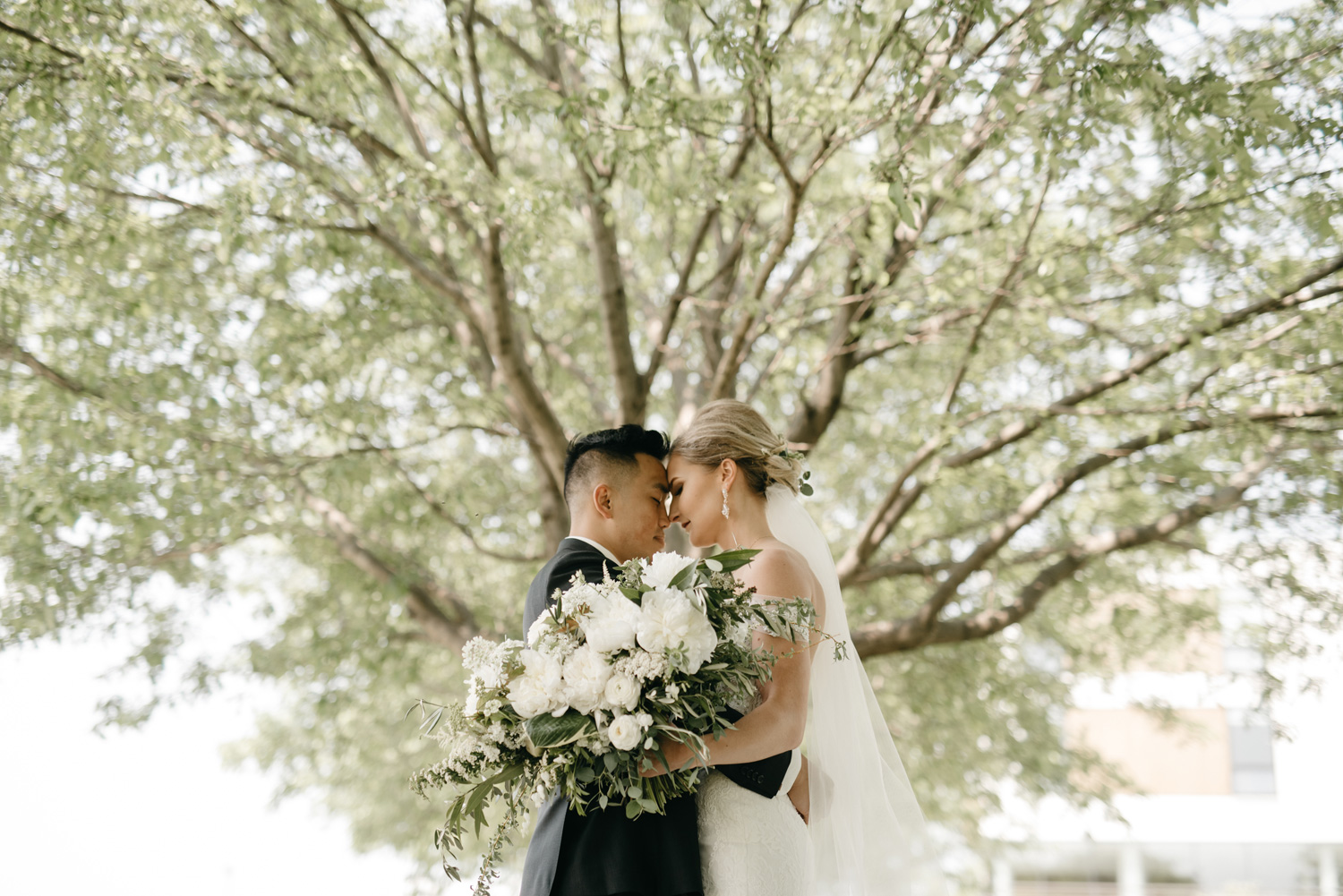 Bride and groom with foreheads together under tree