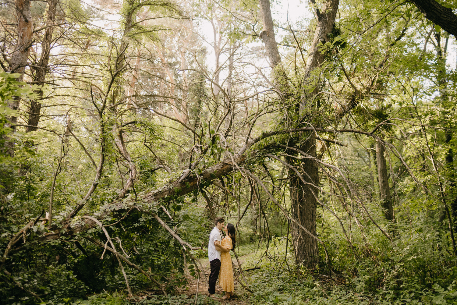 Man and woman under fallen tree in forest
