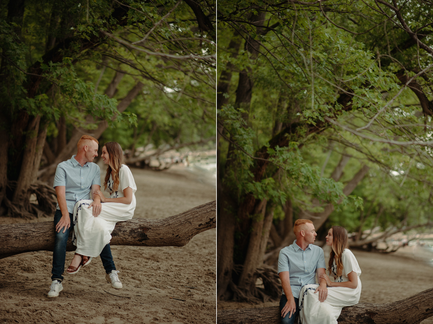 couple sitting on fallen tree engagement photos on the beach