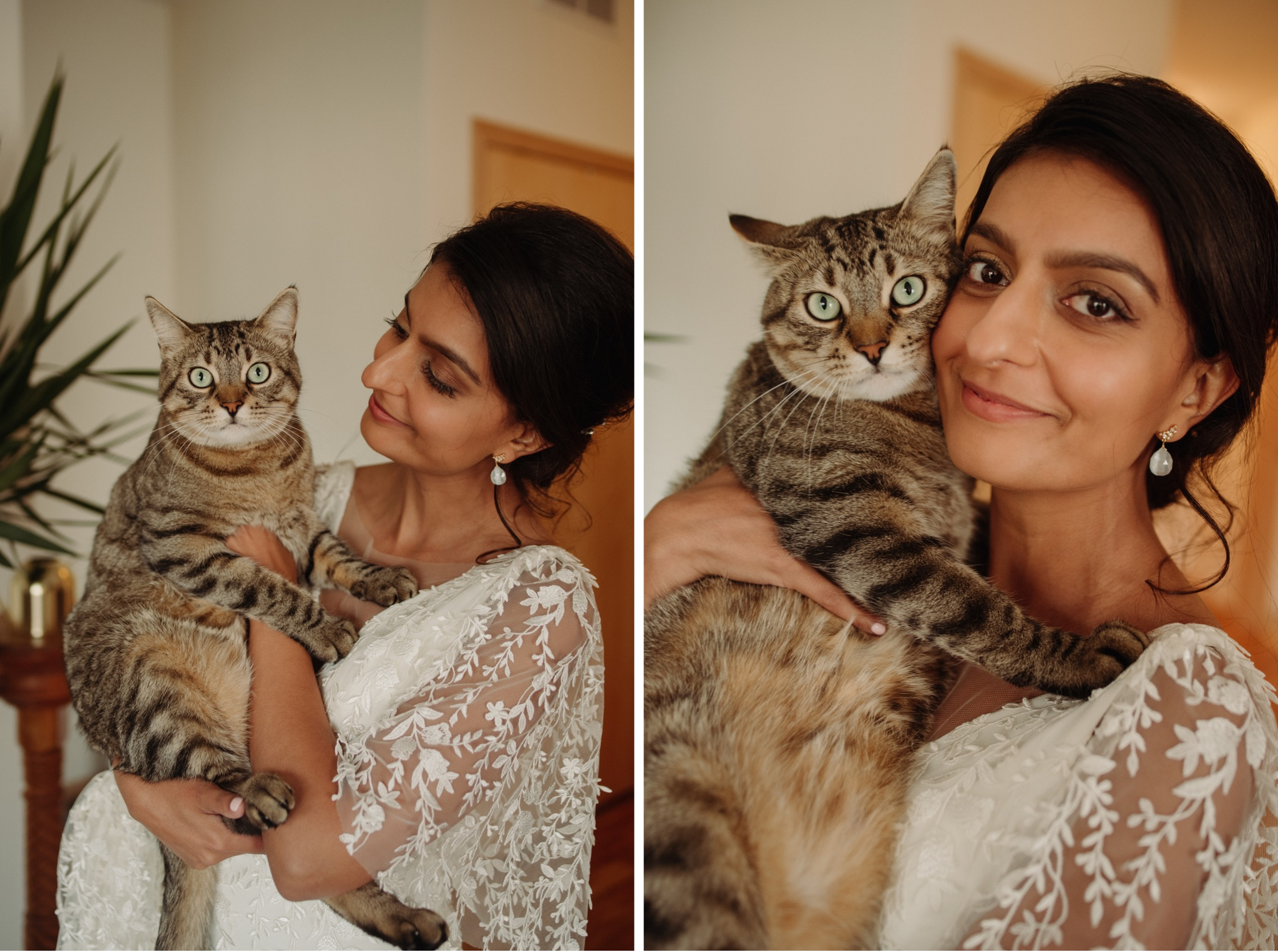 Bride holding a cat